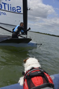 Norman the foiling dog asking Jason Belben for a go
